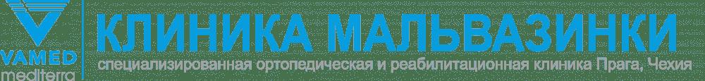 Логотип реабилитационной клиники Малвазинки. Фото