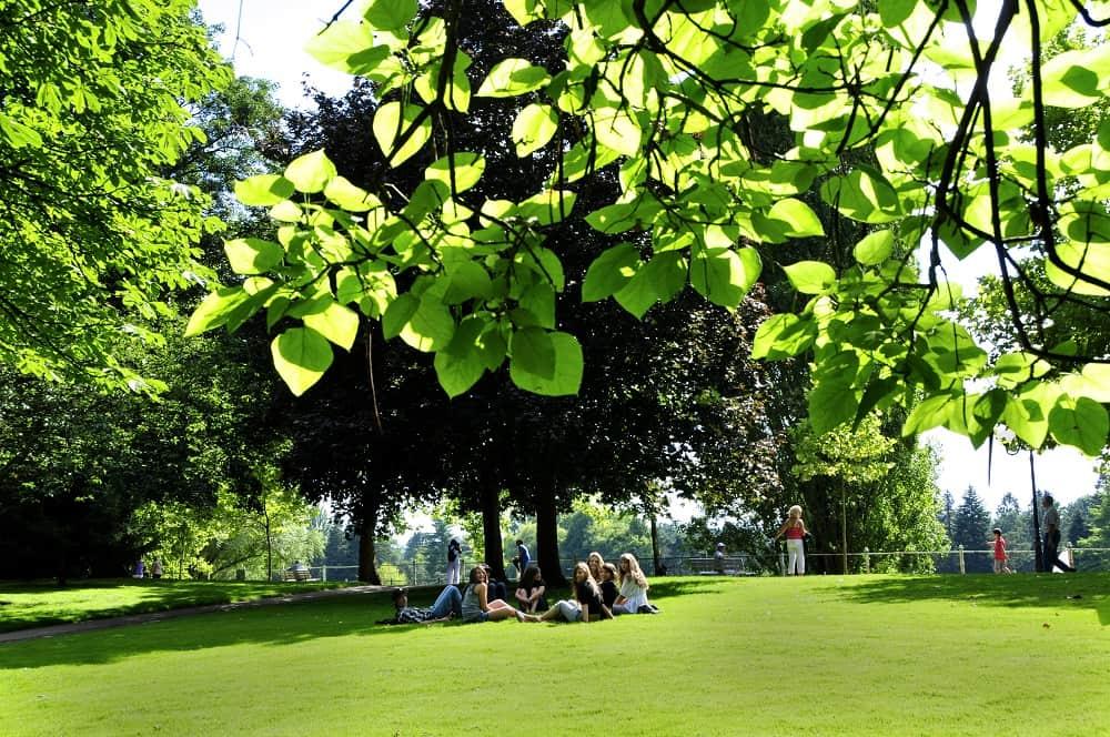 Курорт Виши, парк