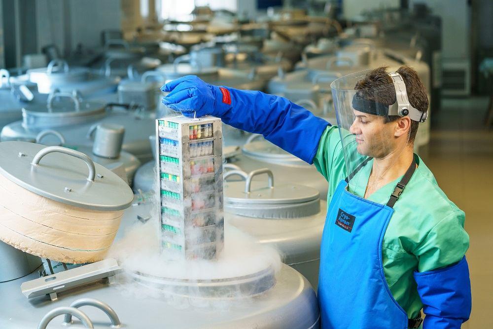 Технология восстановления суставов создана ведущей в стране клиникой – Институтом клеточной медицины. Фото
