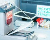 стволовые клетки. фото
