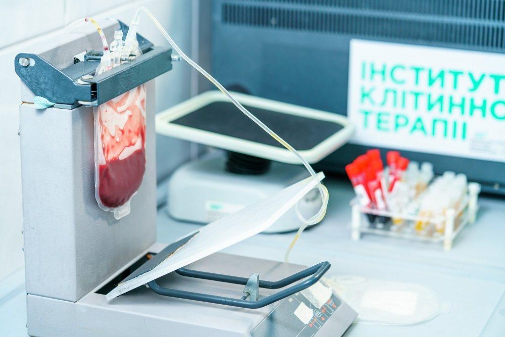 Клетки проходят культивацию: из одной плаценты получается 120-200 миллионов клеток. Фото